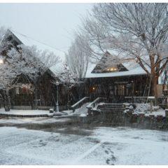 福津店-雪化粧したログハウス